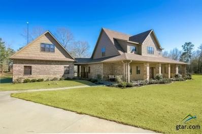 114 Heritage Bend, Diana, TX 75640 - #: 10106688