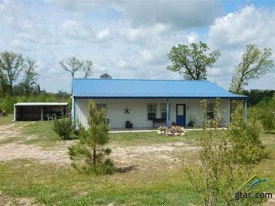 1355 Raintree Lakes Circle, Big Sandy, TX 75755 - #: 10107085