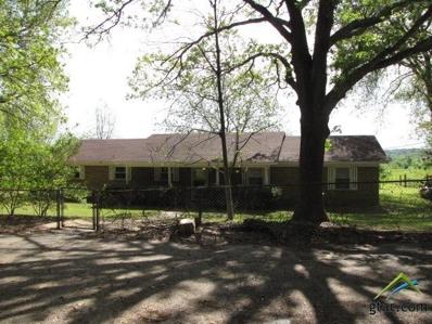 2795 S Cr 401, Henderson, TX 75654 - #: 10107124