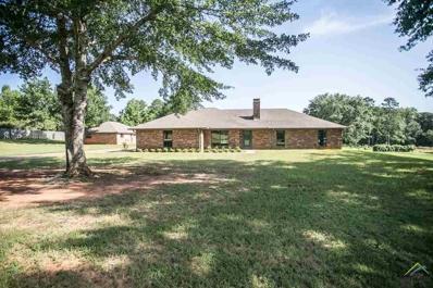 10873 Trenton, Whitehouse, TX 75791 - #: 10107160
