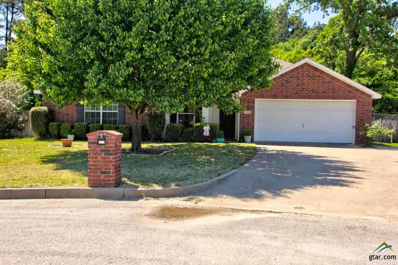 111 Ally Kate Drive, Chandler, TX 75758 - #: 10107253