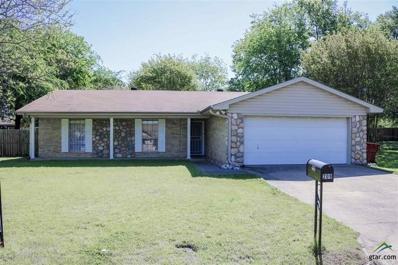 209 Redbird Lane, Mt Vernon, TX 75457 - #: 10107351