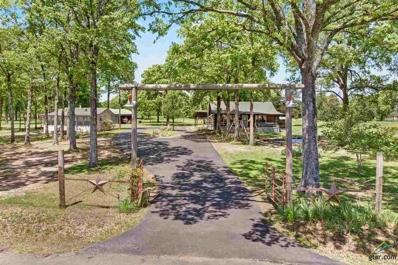 306 County Road 1513, Alba, TX 75410 - #: 10107423