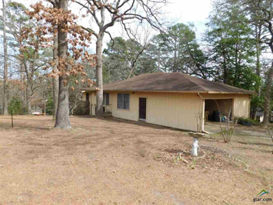 117 Overlake Knoll, Holly Lake Ranch, TX 75765 - #: 10107447