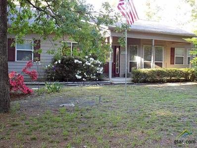 380 Meadow View Path, Holly Lake Ranch, TX 75765 - #: 10107469