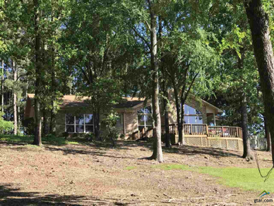11580 Cr 3424, Brownsboro, TX 75756 - #: 10107671
