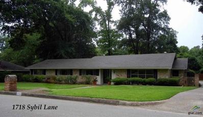 1718 Sybil Lane, Tyler, TX 75703 - #: 10108245