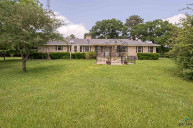15209 Cr 343 Kings Lane, Tyler, TX 75708 - #: 10108261