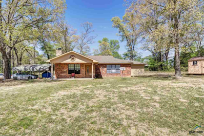 17170 County Road 46, Tyler, TX 75704 - #: 10108422
