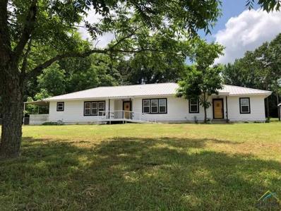 13769 Cr 431 (Jim Hogg Rd), Tyler, TX 75706 - #: 10108602