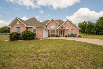 124 County Road 2247, Mineola, TX 75773 - #: 10108641