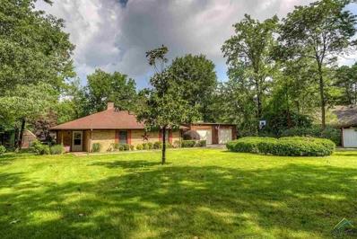 378 Cove Drive, Mt Vernon, TX 75457 - #: 10108655