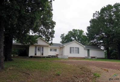 700 N Garrison St., Frankston, TX 75763 - #: 10108686