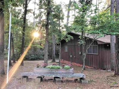 112 Blue Water Lane, Holly Lake Ranch, TX 75765 - #: 10108830