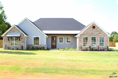 21541 Castle Rock, Bullard, TX 75757 - #: 10108943