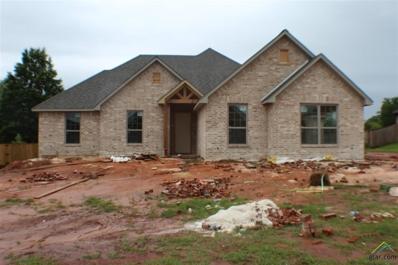 21320 Boone Dr, Bullard, TX 75757 - #: 10108951