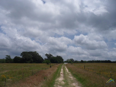 300 County Road 4740, Winnsboro, TX 75494 - #: 10109162