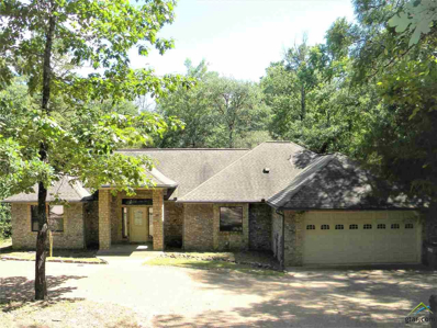 173 Brookside Cove, Holly Lake Ranch, TX 75765 - #: 10109163