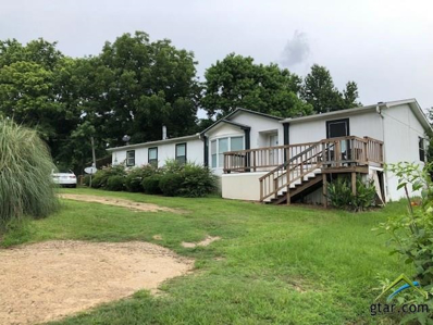 1039 County Road 2920, Pittsburg, TX 75686 - #: 10109580