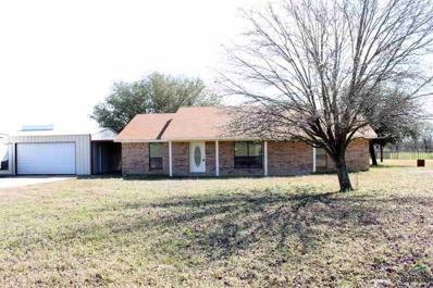 131A Lloyd Street, Yantis, TX 75497 - #: 10109837