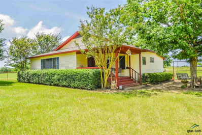 22571 Cr 2138, Troup, TX 75789 - #: 10109862