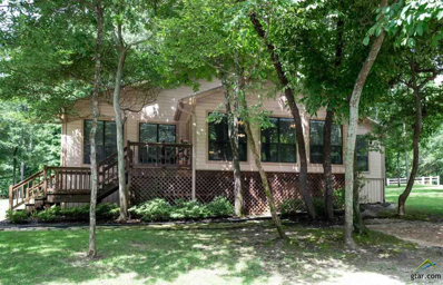 100 King Larry Court, Scroggins, TX 75480 - #: 10109870