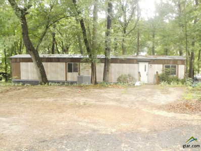 101 South Park Rd., Scroggins, TX 75480 - #: 10109908