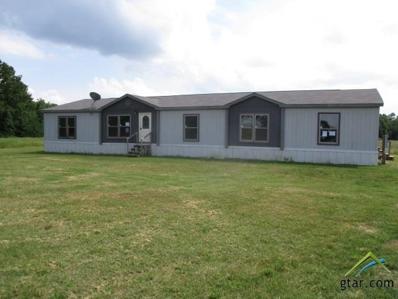 420 County Road 1441, Yantis, TX 75497 - #: 10109923