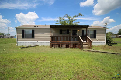 185 Geronimo, Quitman, TX 75783 - #: 10110051