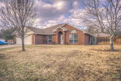 309 Amanda Court, Whitehouse, TX 75791 - #: 10110068