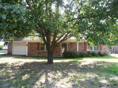244 County Road 2302, Mineola, TX 75773 - #: 10110072
