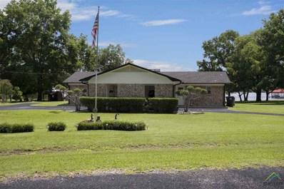 16517 Big Oak Bay Rd, Tyler, TX 75707 - #: 10110151