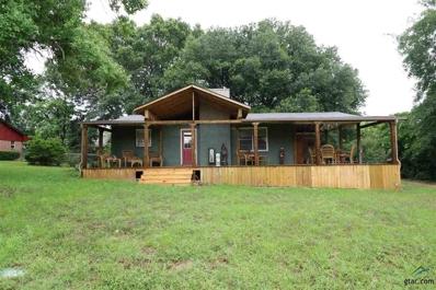 312 Lonestar Ln, Hideaway, TX 75771 - #: 10110290