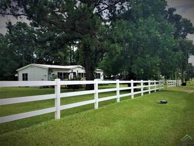 2699 Oak Trail Shores Drive, Chandler, TX 75758 - #: 10110310