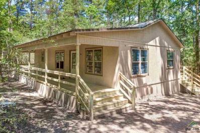 812 Valleywood Trail, Holly Lake Ranch, TX 75765 - #: 10110314