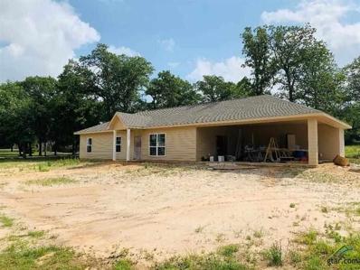 269 Eagle Landing, Winnsboro, TX 75494 - #: 10110326