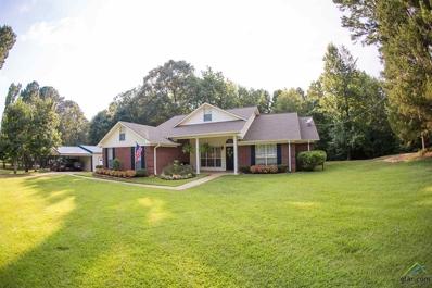 10703 Red Bud Pl., Whitehouse, TX 75791 - #: 10110460
