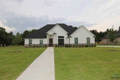16541 Hailey Court, Tyler, TX 75703 - #: 10110463