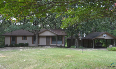 160 Cr 1227, Quitman, TX 75783 - #: 10110681