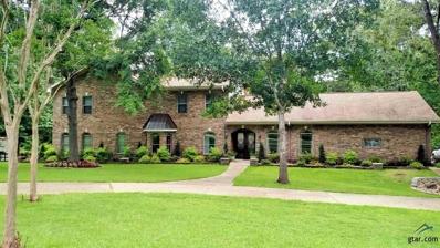 19517 Oakmeadow Circle, Tyler, TX 75703 - #: 10110782