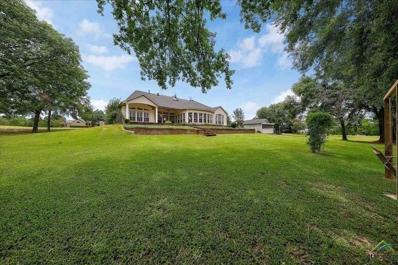 250 County Road 1576, Alba, TX 75410 - #: 10110800