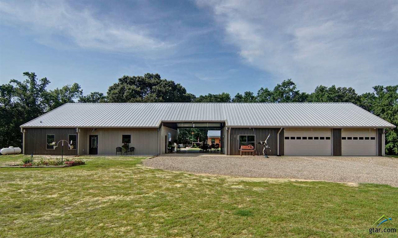 230 County Road 3234, Quitman, TX 75783 - #: 10110940