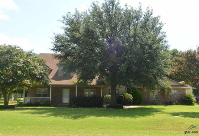 249 Private Road 5940, Emory, TX 75440 - #: 10111256