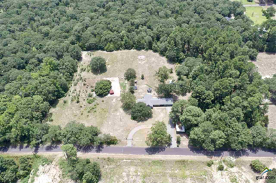 420 County Road 2460, Mineola, TX 75773 - #: 10111350