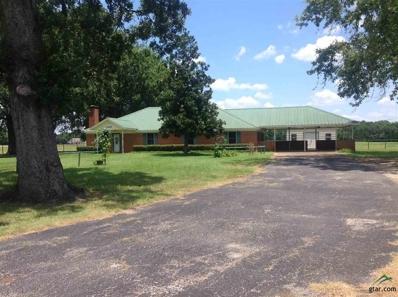 13449 Farm To Market 346 W, Flint, TX 75762 - #: 10111395