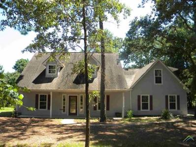 165 Green Meadow Trl, Holly Lake Ranch, TX 75765 - #: 10111417