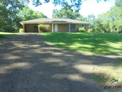 13567 County Road 472, Tyler, TX 75706 - #: 10111519