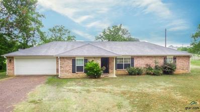 355 Old Coffeville Rd, Gilmer, TX 75644 - #: 10111633