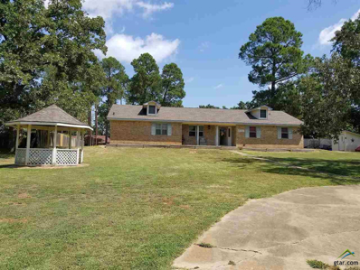 803 Hill Street, Quitman, TX 75783 - #: 10111664