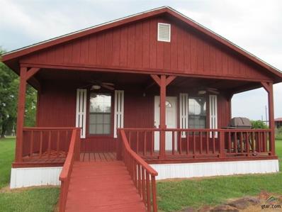 Lot 245 Kickapoo, Quitman, TX 75783 - #: 10111832